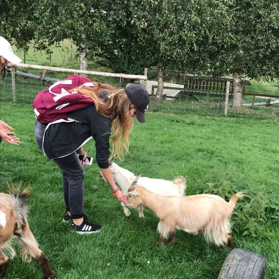 young woman petting small goats